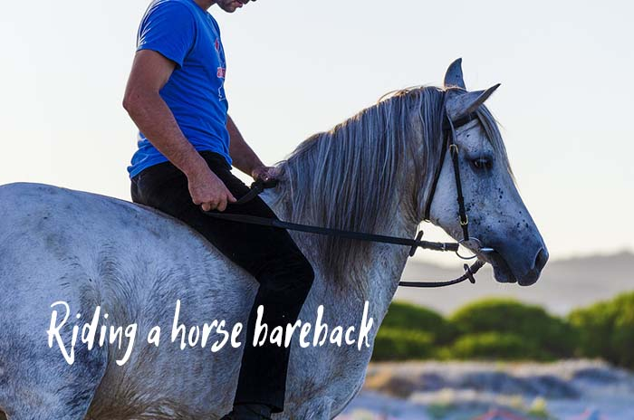 How to Ride a Horse Bareback (Without a Saddle)