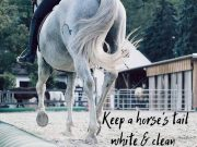 how to keep a horse's tail white and clean