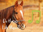 do horses like music