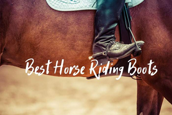These Are the Best Horse Riding Boots in 2021