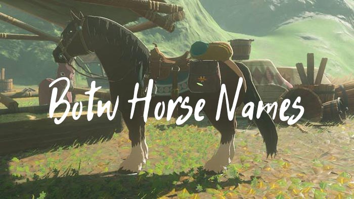 BOTW Horse Names (500+ Horse Name Ideas For Breath of the Wild)
