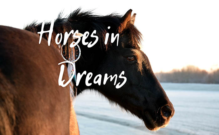 dreams about horses